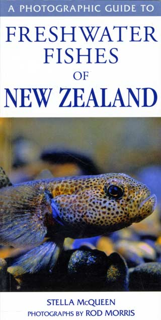 A Photographic Guide to Freshwater Fishes of New Zealand. By Stella McQueen Photographs by Rod Morris.