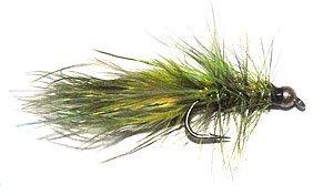 Gold-head Woolly Bugger