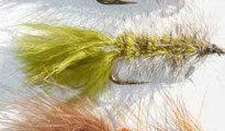 Wooly Buggar trout fly