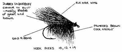 Elk hair Caddis with Ian Cole