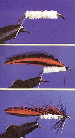 1. Bind thread from eye to bend of hook to form base. Tie in oval tinsel. Tie in white Chenille. Coat thread base with cement. Wind chenille to head, tie and trim. 2. Select your matched pairs of red and black hackles. Tie in at head with black hackles in the middle. 3. Wind tinsel through wing feathers up to the head and tie off. Wind on black hackle to complete, and cement head.