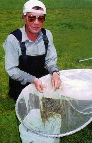 "Richard Hunter with a good ""pudding"" of whitebait."