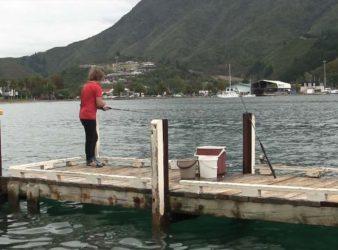 Picton Yacht Club Jetty.