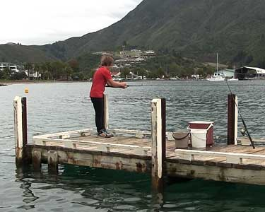 Picton Yacht Club Jetty.