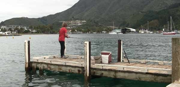Yacht Club Jetty Picton Harbour.