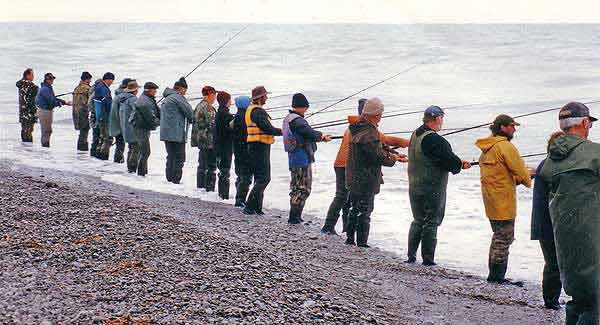 Rangitata River line of salmon anglers.
