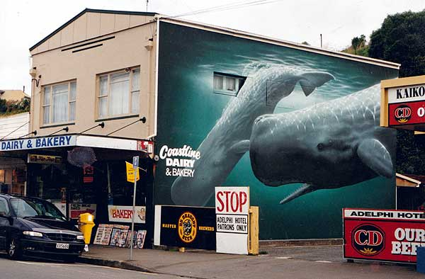 Whales painted on the wall of a shop in the Kaikoura township. Whale watching has transformed Kaikoura into an international destination.