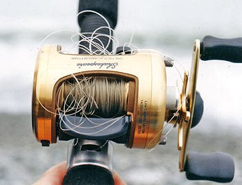 Salmon Anglers Dread Getting A Birds Nest It Pays To Carry A Spare Spool For Your Reel