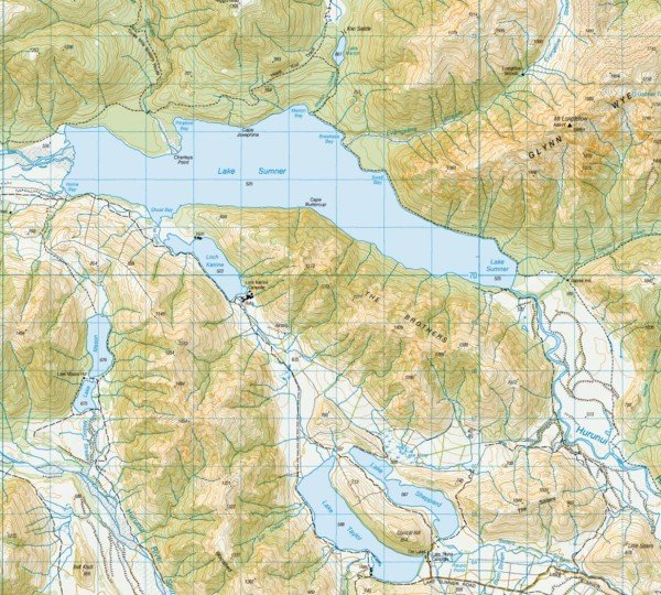 Lake Sumner. Map courtesy of LINZ. Crown copyright reserved. Click on map to enlarge.