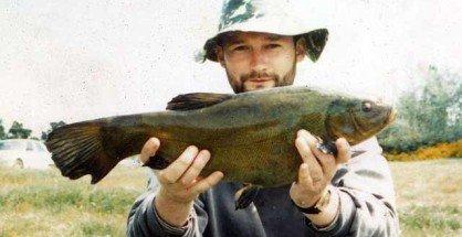 Tech are a dark olive colour. Smaller fish are coloured brown.