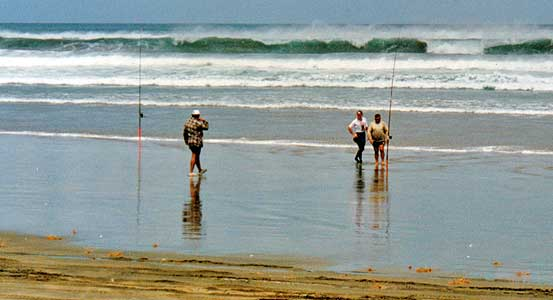 Photograph: Surfcasters waiting for the sandbar behind these breakers to come up with the falling tide. Photo: DJ Moresby.