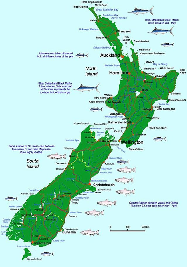 Map of New Zealand showing the general locations where sports fish can be caught. Brown and rainbow trout are caught in both the North and South Islands. New Zealand Fishing.