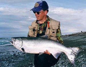 Salmon. New Zealand Fishing.