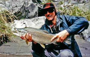 Headwaters brown trout. New Zealand fishing.