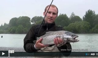 Sea-run trout fishing video featured image
