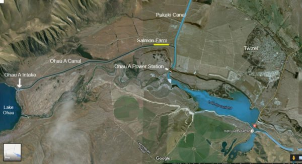 Twizel Canals Fishing Tips - Ohau, Pukaki and Tekapo Canals