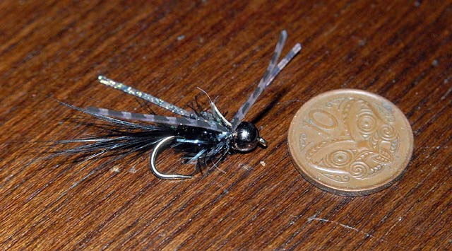 Black Nymph with long rubber legs.