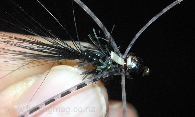 Black-Tungsten-Bead-Head-Attractor-Nymph