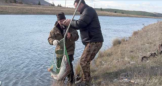 A huge rainbow trout is quickly weighed, photographed and released to fight another day. Mackenzie Country Canals Mid-Winter Fishing