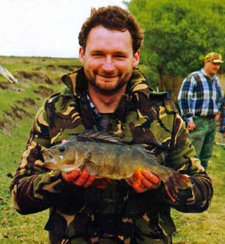 Three pound perch. Perch - Perca fluviatilis - introduced freshwater fish
