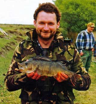 Three pound perch. Perch - Perca fluviatilis - introduced freshwater fish