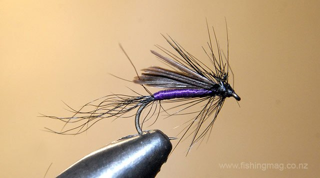 Purple and Grouse Wet Fly. Traditional Wet Flies.