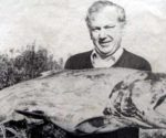 Big Canterbury Salmon.