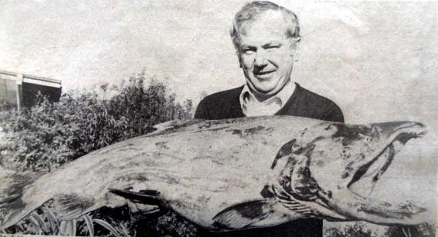 Geoff Elliott with his 41 lb salmon: April 1984 Salmon Fishing Memories.