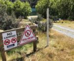 "Selwyn District Council ""No Camping"" sign at Lake Selfe in the Canterbury High Country. Photograph by T.Austin. Featured image."