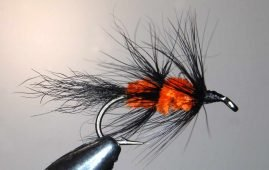 Fuzzy Wuzzy trout fly.