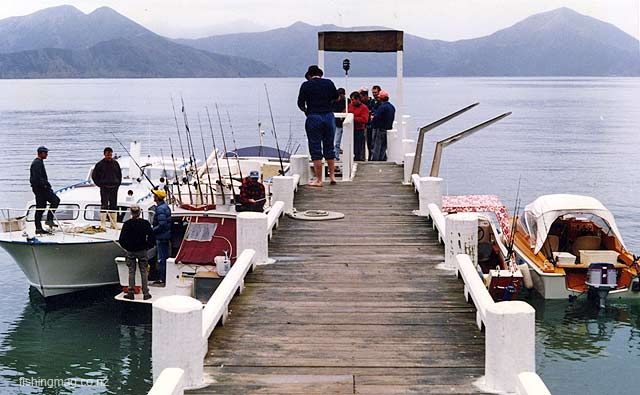 Members of the Canterbury Sport Fishing Club tied up at Waitata Bay.