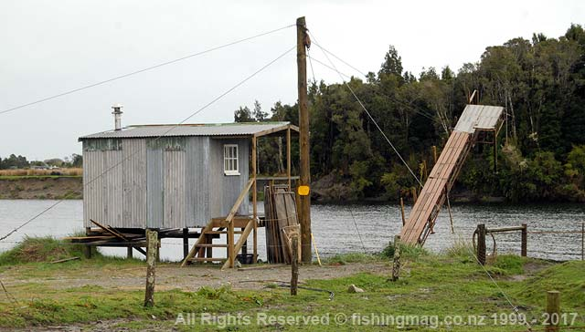 Upstream on the Okuru River, this is a typical South Westland registered whitebait stand setup. It is a marvel of engineering designed to be lifted from the water to beat a flood which could easily wreck a normal stand. The hut is also on stilts. Photograph; Allan Burgess.  Whitebaiting Arawhata Waiatoto Turnbull Okuru Rivers.