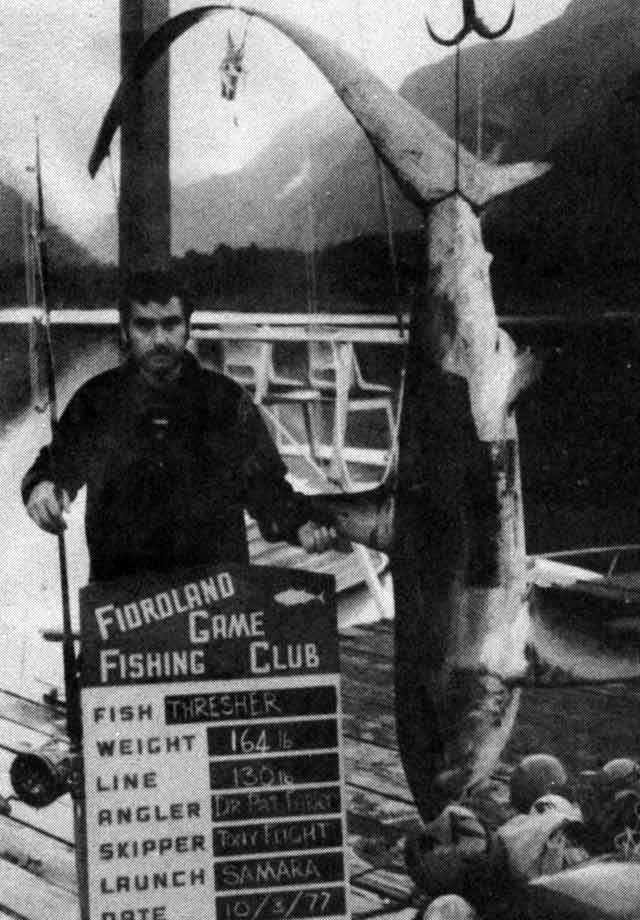 Dr Pat Farry with the first thresher taken by a member of the Fiordland Gama Fishing Club.