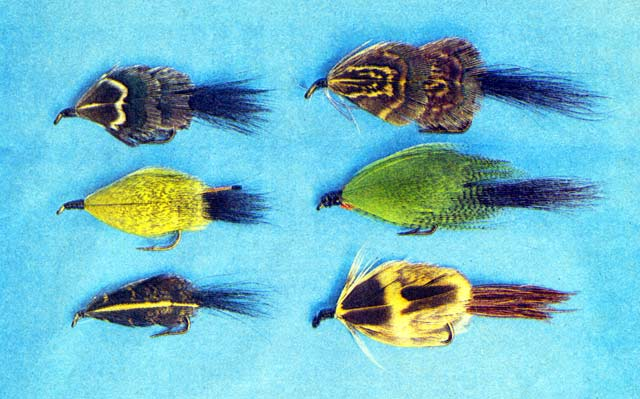 Killer Patterns. A selection of killer pattern Taupo flies. Top: Mrs Simpson, Middle: Hamill 's Killer, Bottom: Kilwell No. 1 (left), and Leslie's Lure variation (right).