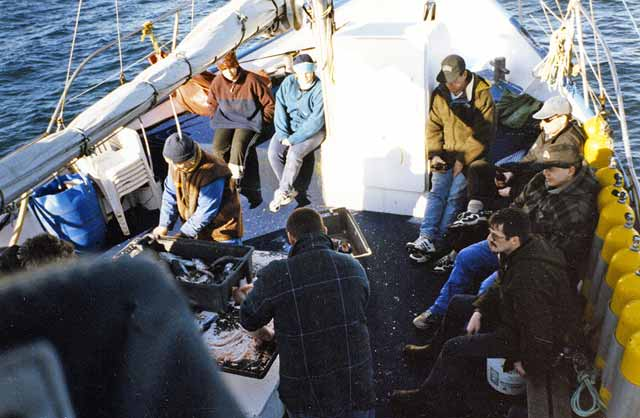 Dividing the catch at the end of the day's fishing aboard the Takaroa II in Foveaux Strait.