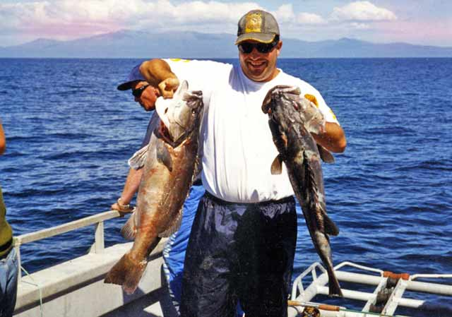 The author with brace of school groper - the largest weighing 25lb. Fishing Foveaux Strait.