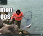 Salmon Fishing Videos Thumbnail