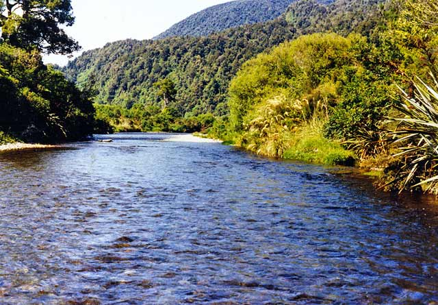 The clear waters of the Orangipuku River. Moana-Kotuku.