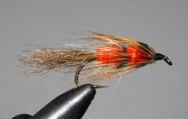 Red Setter trout fly.