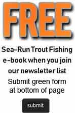 Sea-run trout e-book subscription offer