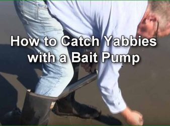 How to Catch Yabbies, or Ghost Shrimp, with a Bait Pump Video