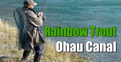 Ohau A Canal Trout Fishing Video featured image.