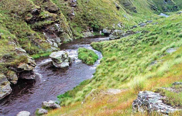 The Teviot River. Peat Streams.