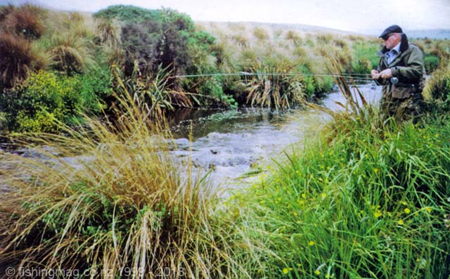 Selwyn Shanks fishing a small stream in Southland. Peat Streams.
