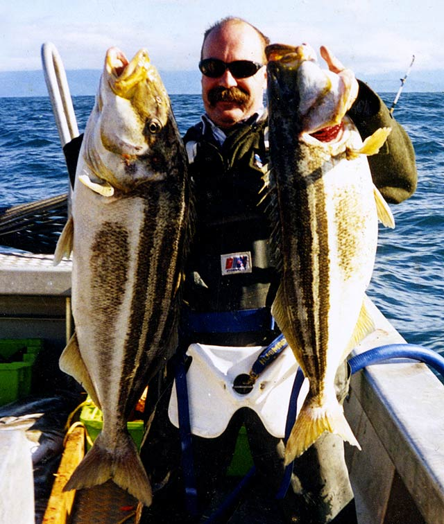 Tony Langdale-Hunt with a brace of massive trumpeter taken off the Canterbury Coast.