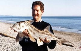 Allan Burges with a 6.8kg (15 lbs) elephantfish caught surfcasting near Haast, Westland.