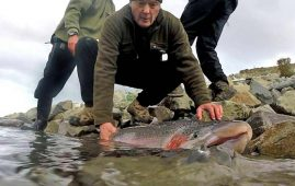 Releasing a big rainbow at one of the Twizel Canals.