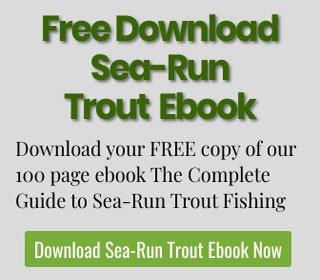 Free Sea-run Trout Ebook