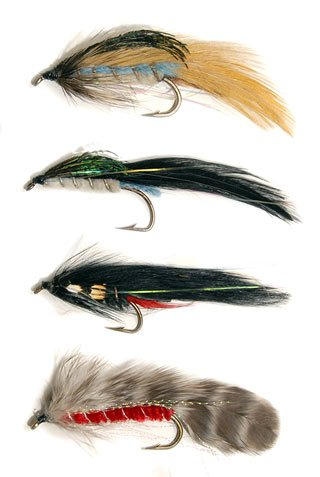 From top: Hopes Silvery, Hopes Dark, Black Rabbit, Barred Rock Red.