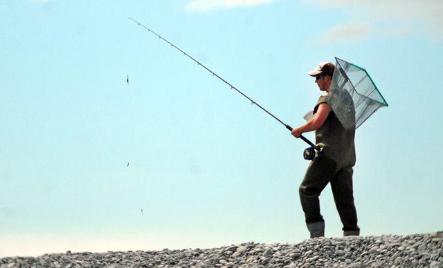 An angler at the mouth of the Rakaia River with whitebait scoop net and sea-run trout lure rod. Note the typical rod set-up with D lead and two lures.